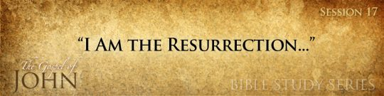 Gospel of John (Online Bible Study)